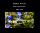 Florida Wildlife, as listed under Fine Art Photography