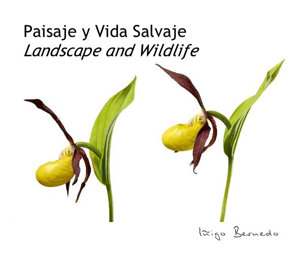 Click to preview Paisaje y Vida Salvaje Landscape and Wildlife photo book