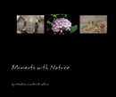 Moments with Nature, as listed under Fine Art Photography