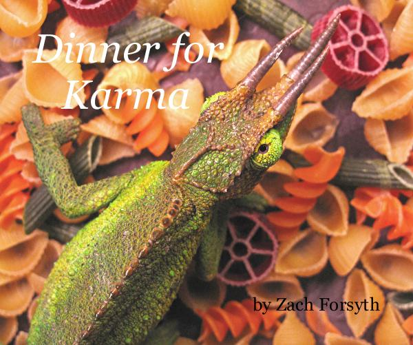 Click to preview Dinner for Karma photo book