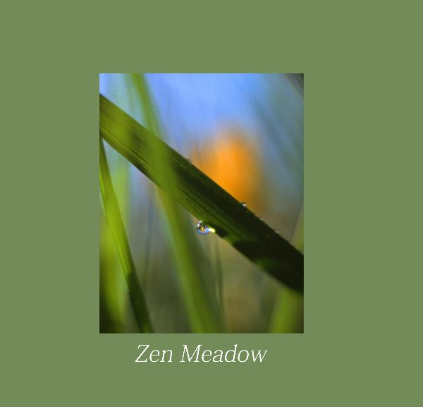 View Zen Meadow by Helen Burrow