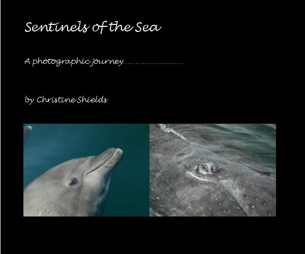 View Sentinels of the Sea by Christine Shields