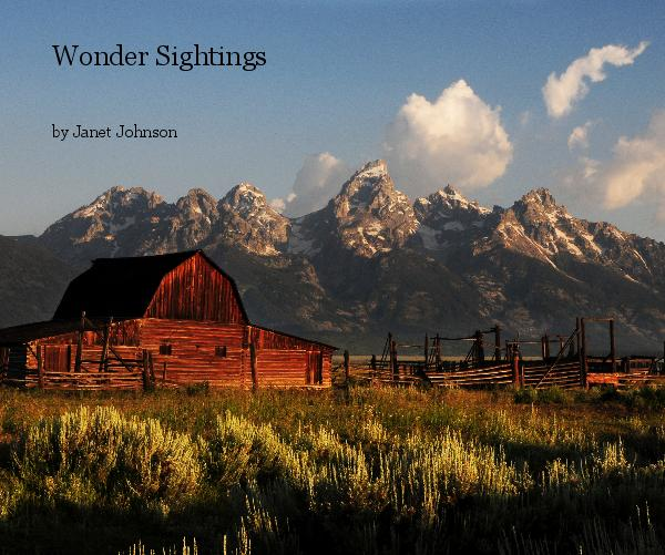 View Wonder Sightings by Janet Johnson