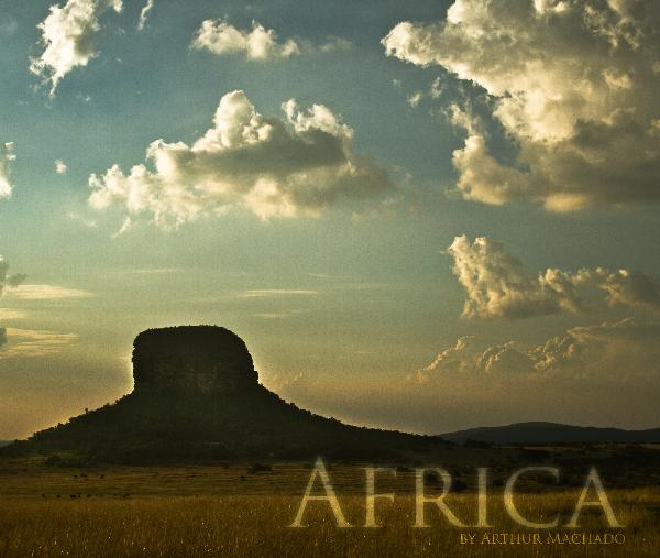 View Africa by Arthur Machado