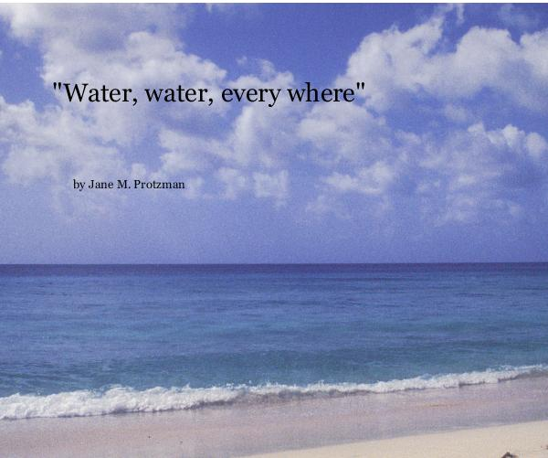 "View ""Water, water, every where"" by Jane M. Protzman"