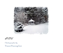 SNOW - Arts & Photography photo book