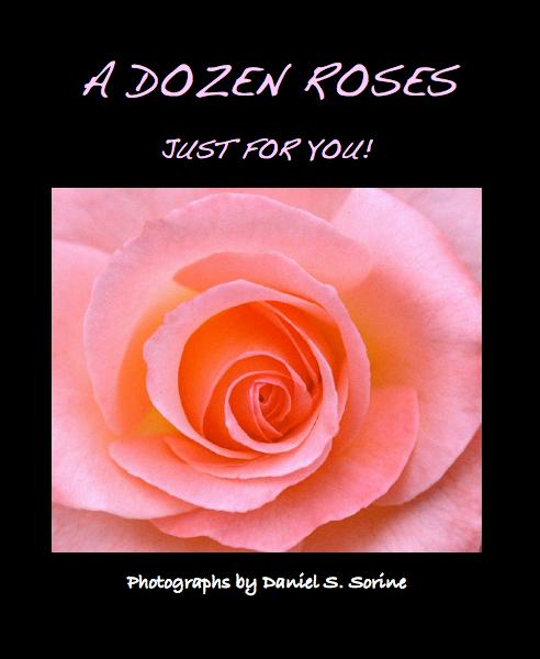 View A DOZEN ROSES by Photographs by Daniel S. Sorine
