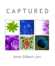 C A P T U R E D, as listed under Fine Art Photography