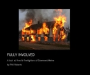 FULLY INVOLVED - Arts & Photography photo book