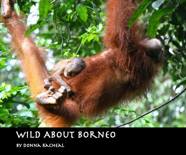 View Wild About Borneo by Donna Racheal