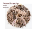 Fictional Perspectives - Fine Art photo book