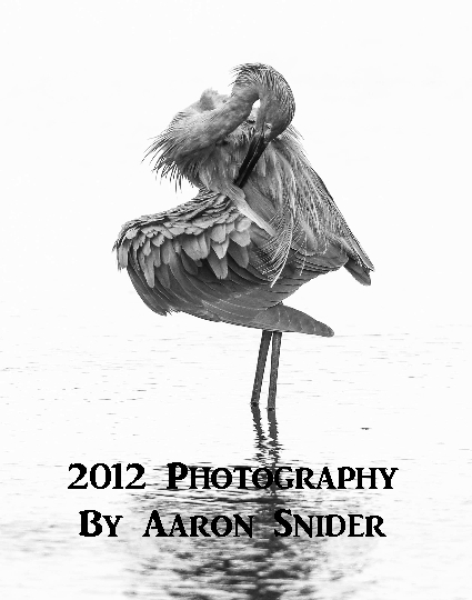 Click to preview 2012 Photography photo book