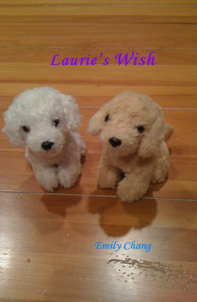 View Laurie's Wish by Emily Chang