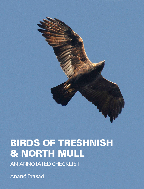 Ver Birds of Treshnish & North Mull por Anand Prasad