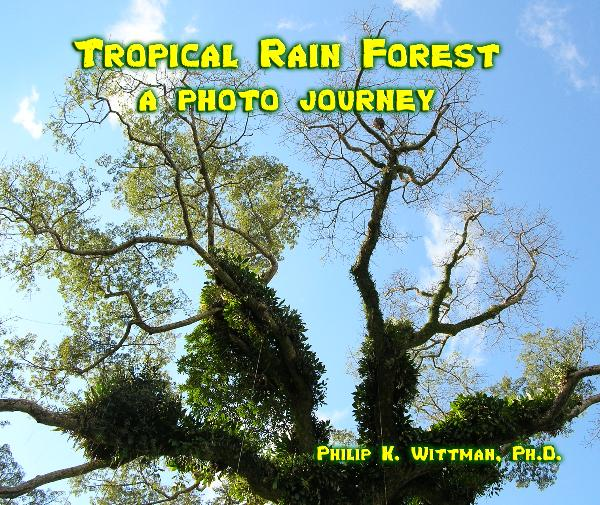 Click to preview Tropical Rain Forest photo book