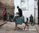 4 días en FEZ 1/2, as listed under Travel