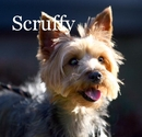 Scruffy - photo book