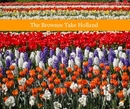 The Brownes Take Holland - Travel photo book