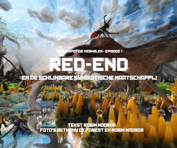 Ver RED-END EN DE SCHIJNBARE SYMBIOTISCHE MAATSCHAPPIJ por TEKST ROBIN NOORDA FOTO'S BETHANY DE FOREST EN ROBIN NOORDA