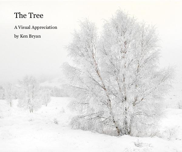 View The Tree by Ken Bryan