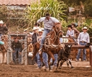 California Junior Rodeo - libro de fotografías