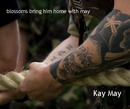 blossoms bring him home with may Kay May - photo book