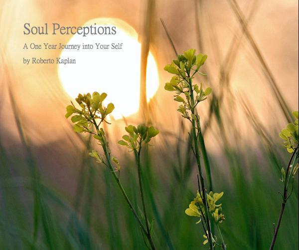View Soul Perceptions by Roberto Kaplan