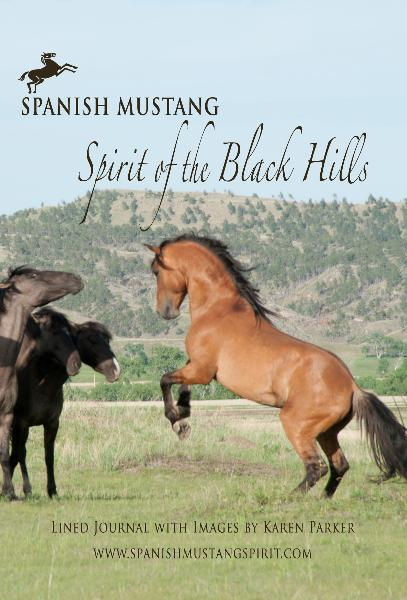 View Spanish Mustang Spirit of the Black Hills by Karen Parker