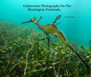 Underwater Photography On The Mornington Peninsula., as listed under Arts & Photography