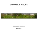 Souvenirs - 2012, as listed under Fine Art Photography