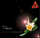 Tulipani - Arts & Photography photo book