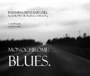 Monochrome: Blues., as listed under Arts & Photography
