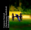 Cannons SurrealChickamauga Battlefield National Park, as listed under Arts & Photography