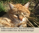 Goldies Gouden Jaren Anni dorati di Goldie Goldie's Golden Years By Samuel Barringer, as listed under Pets