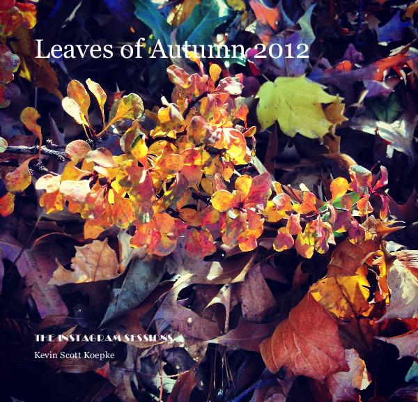 View Leaves of Autumn 2012 by Kevin Scott Koepke
