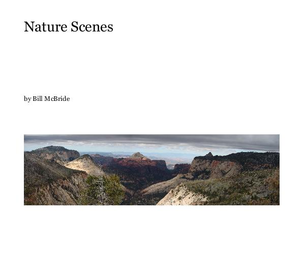 View Nature Scenes by Bill McBride