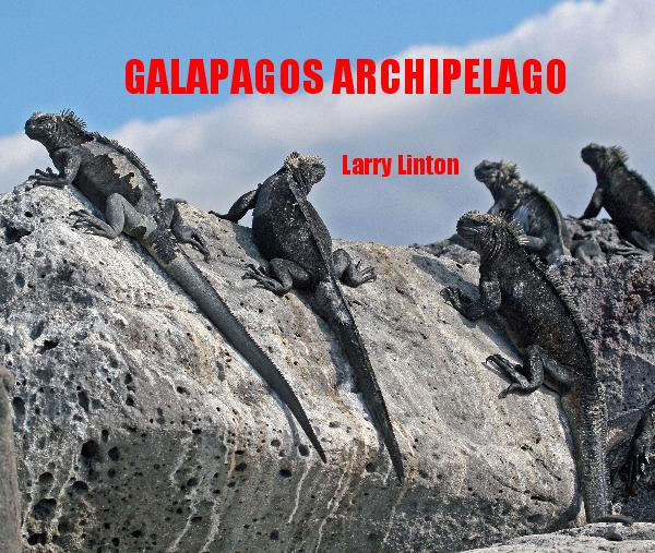 View GALAPAGOS ARCHIPELAGO by Larry Linton