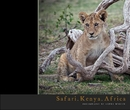 Safari.Kenya.Africa - Sports & Adventure photo book