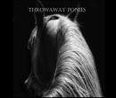 Throwaway Ponies, as listed under Arts & Photography