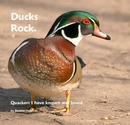 Ducks Rock. - photo book