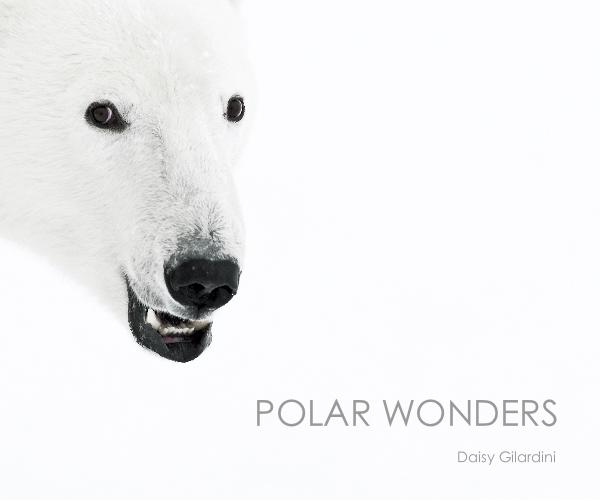 Click to preview POLAR WONDERS (english) photo book