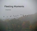Fleeting Moments - photo book
