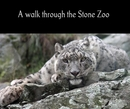 A walk through the Stone Zoo - Nonprofits & Fundraising photo book