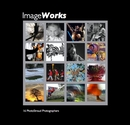 ImageWorks, as listed under Fine Art Photography