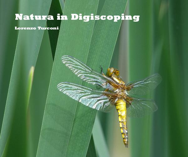 Click to preview Natura in Digiscoping photo book
