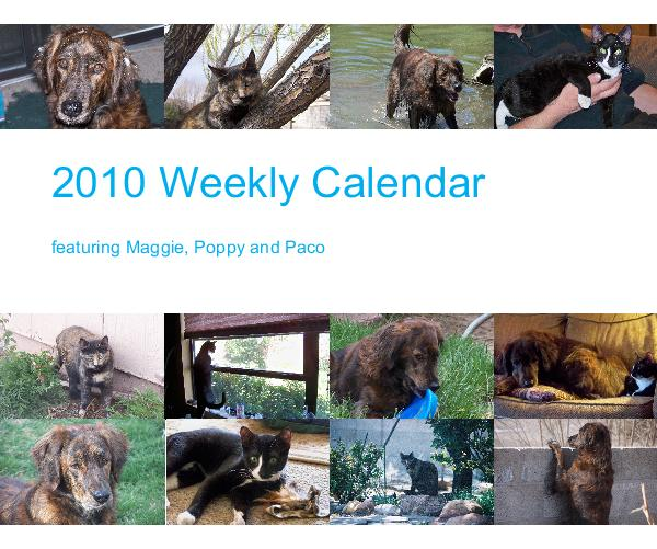 View 2010 Weekly Calendar by Julie Coningham