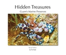 Hidden Treasures, Second Edition - Viajes libro de fotografías