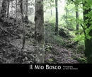 Il Mio Bosco, as listed under Fine Art Photography
