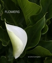 FLOWERS, as listed under Fine Art Photography