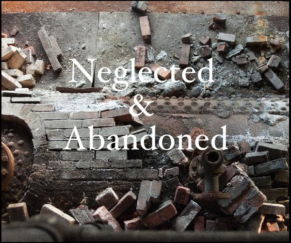 Click to preview Neglected & Abandoned photo book